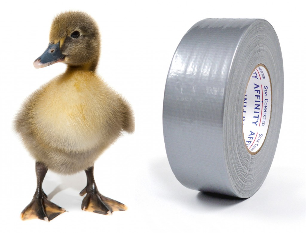 Image result for tape a duck